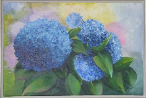 Blaue Hortensien 2016