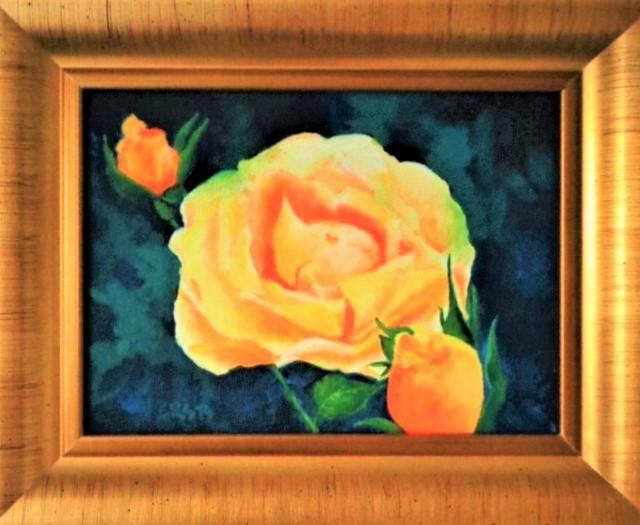 Duftende Rosenblüten 2019