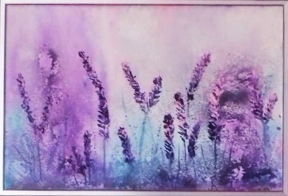 Lavendel in den Cotswolds