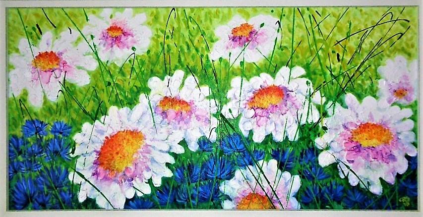 Sommerwiese mit Margeriten
